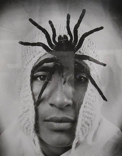 """Spiderman"" by Meinel at Throckmorton"