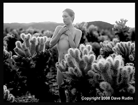 Nude,  Joshua Tree, 2008