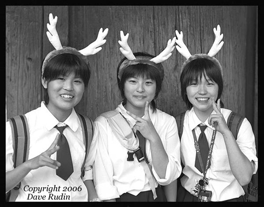 Girls With Antlers, Nara, Japan, 2005