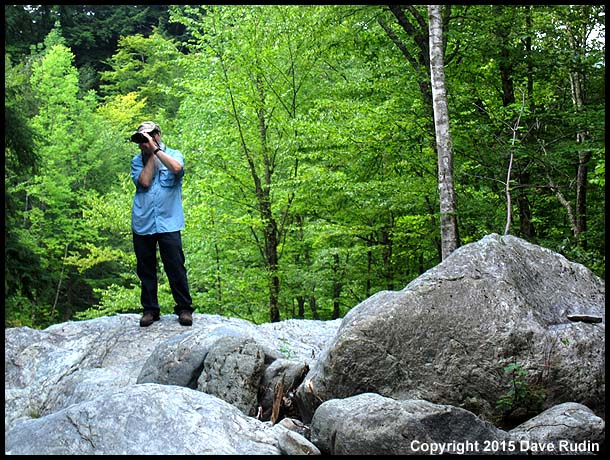 Dave L photographs amidst the Vermont greenery